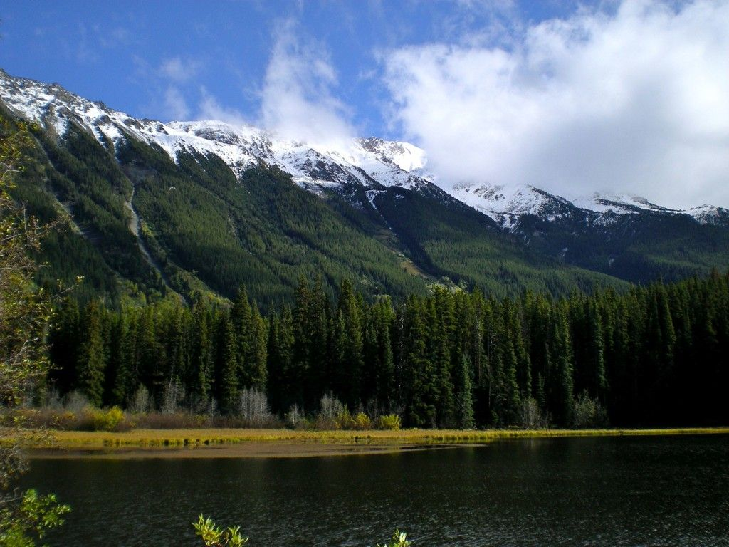 Main Photo: Mead Lake: Land for sale (Whistler)
