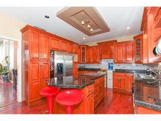 """Photo 9: 14861 74TH Avenue in Surrey: East Newton House for sale in """"CHIMNEY HEIGHTS"""" : MLS®# F1438528"""