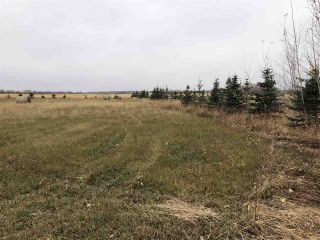 Photo 1: Twp Rd 583 Rge Rd 271: Rural Westlock County Rural Land/Vacant Lot for sale : MLS®# E4218422
