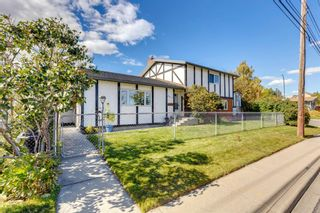 Photo 31: 2611 6 Street NE in Calgary: Winston Heights/Mountview Detached for sale : MLS®# A1146720