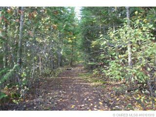 Photo 6: 23 Vickers Trail in Anglemont: Anglemont Estates Vacant Land for sale (North Shuswap)  : MLS®# 10131535