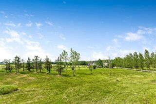 Photo 39: 32018 333 Avenue W: Rural Foothills County Detached for sale : MLS®# A1121869