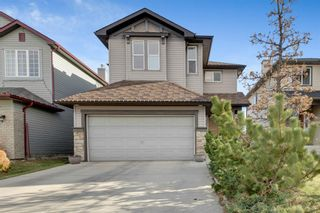 Photo 1: 389 Evanston View NW in Calgary: Evanston Detached for sale : MLS®# A1043171