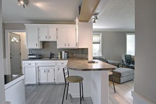 Photo 7: 420 Thornhill Place NW in Calgary: Thorncliffe Detached for sale : MLS®# A1146639