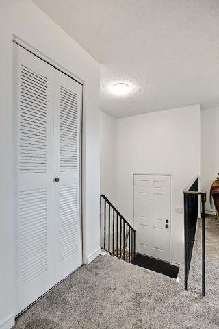 Photo 28:  in Edmonton: Zone 35 House for sale : MLS®# E4254409