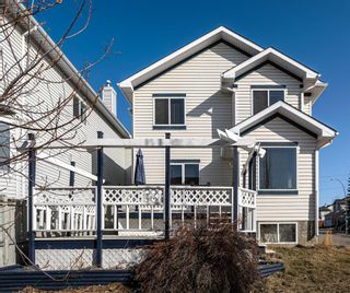 Photo 34: 303 Scotia Point NW in Calgary: Scenic Acres Detached for sale : MLS®# A1089447