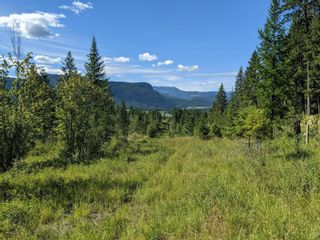 Photo 40: 455 Albers Road, in Lumby: House for sale : MLS®# 10235226
