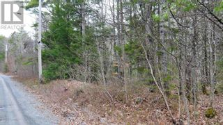 Photo 7: Lot Medway River Road in Mill Village: Vacant Land for sale : MLS®# 202108227
