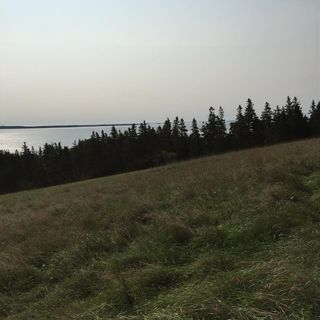 Photo 6: 280 GREEN BAY Road in Green Bay: 405-Lunenburg County Residential for sale (South Shore)  : MLS®# 201507290