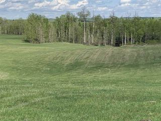 Photo 1: 53000 Range Road 73: Rural Parkland County Rural Land/Vacant Lot for sale : MLS®# E4202767