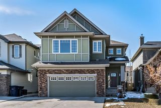 Main Photo: 19 Cimarron Springs Road: Okotoks Detached for sale : MLS®# A1087878