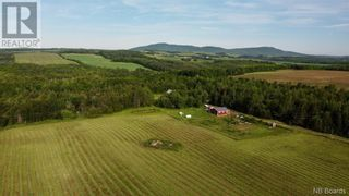 Photo 4: 799 Back Greenfield Road in Summerfield: Agriculture for sale : MLS®# NB060241