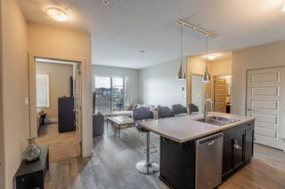 Photo 2: 233 503 ALBANY Way in Edmonton: Zone 27 Condo for sale : MLS®# E4240556