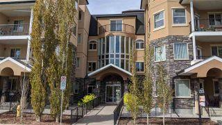 Photo 1: 120 8730 82 Avenue in Edmonton: Zone 18 Condo for sale : MLS®# E4236571