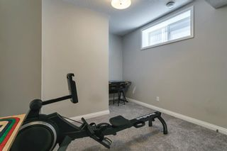 Photo 39: 56 Masters Rise SE in Calgary: Mahogany Detached for sale : MLS®# A1112189