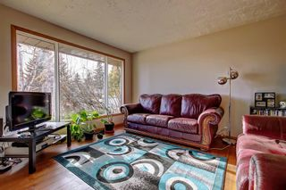 Photo 15: 7 PINEBROOK Place NE in Calgary: Pineridge Detached for sale : MLS®# C4221689