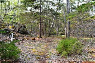 Photo 12: Old Kettle Road in Port Medway: Vacant Land for sale : MLS®# 202113253