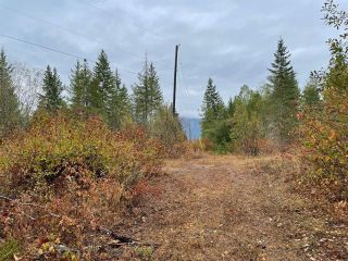 Photo 19: 292 Terry Road, in Enderby: Vacant Land for sale : MLS®# 10239679