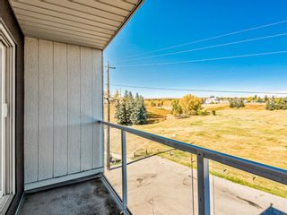 Photo 5: 412A 4455 Greenview Drive NE in Calgary: Greenview Apartment for sale : MLS®# A1101294