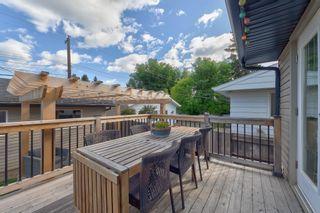 Photo 44: 14224 95 Avenue in Edmonton: Zone 10 House for sale : MLS®# E4259113