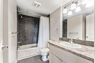 Photo 17: 460 310 8 Street SW in Calgary: Eau Claire Apartment for sale : MLS®# A1022448
