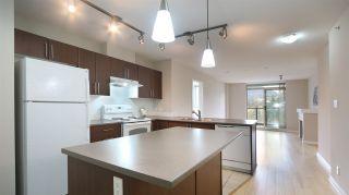 Photo 9: 1611 1178 HEFFLEY CRESCENT in Coquitlam: North Coquitlam Condo for sale : MLS®# R2000334