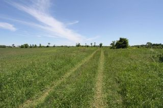 Photo 6: Lt 17 Centennial Park Road in Kawartha Lakes: Rural Eldon Property for sale : MLS®# X4795681
