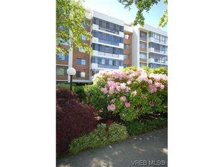 Photo 2: 404 420 Linden Ave in VICTORIA: Vi Fairfield West Condo for sale (Victoria)  : MLS®# 627566
