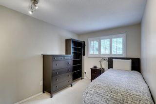Photo 34: 17 MARLBORO Road in Edmonton: Zone 16 House for sale : MLS®# E4248325