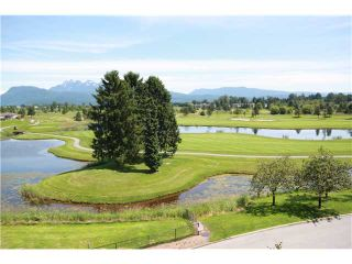 "Photo 7: 426 19673 MEADOW GARDENS Way in Pitt Meadows: North Meadows Condo for sale in ""THE FAIRWAYS"" : MLS®# V952865"