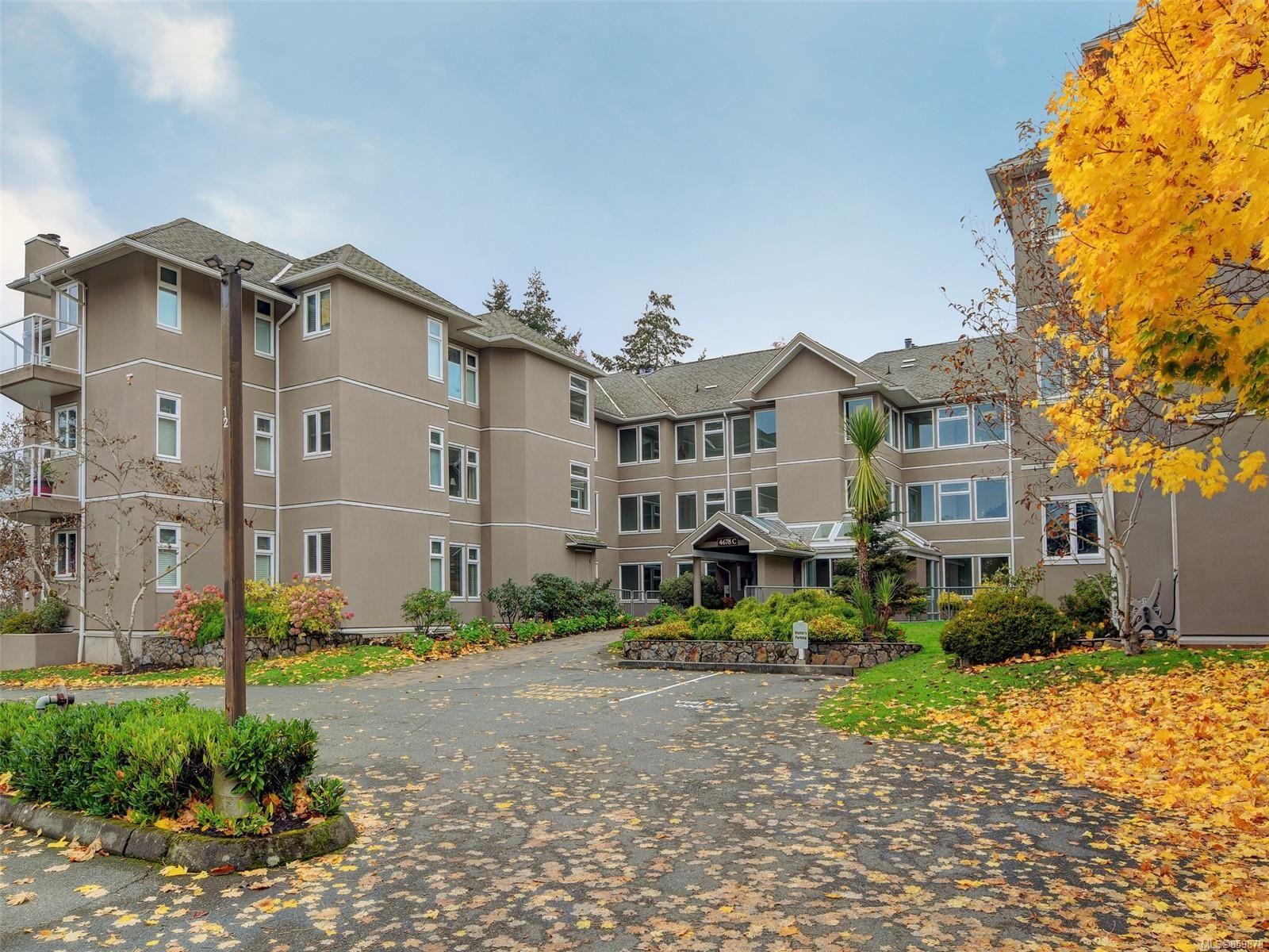 Main Photo: 203C 4678 Elk Lake Dr in : SW Royal Oak Condo for sale (Saanich West)  : MLS®# 859878