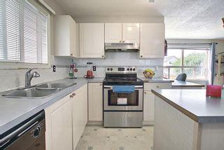 Photo 15: 327 Taravista Street NE in Calgary: Taradale Detached for sale : MLS®# A1125170