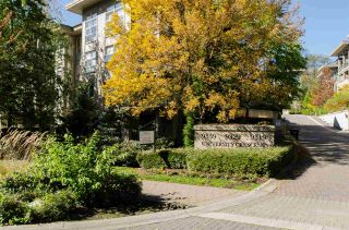 """Photo 1: 205 9339 UNIVERSITY Crescent in Burnaby: Simon Fraser Univer. Condo for sale in """"HARMONY"""" (Burnaby North)  : MLS®# R2113560"""