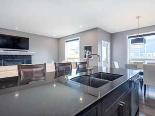 Photo 18: 155 Skyview Shores Crescent NE in Calgary: Skyview Ranch Detached for sale : MLS®# A1110098