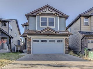 Main Photo: 73 Skyview Shores Terrace NE in Calgary: Skyview Ranch Detached for sale : MLS®# A1156302