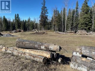 Photo 47: 53118 Range Road 224A in Rural Yellowhead County: House for sale : MLS®# A1100110