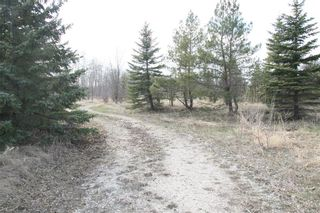 Photo 4: LOT 6 0 Raleigh Street in St Clements: Narol Residential for sale (R02)  : MLS®# 202110735