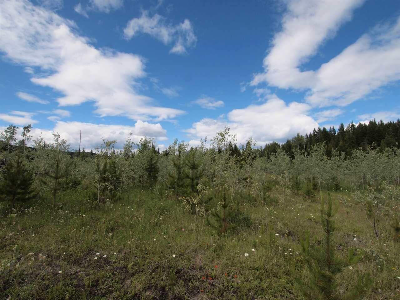 Photo 5: Photos: 4573 BAKKEN Road: Forest Grove Land for sale (100 Mile House (Zone 10))  : MLS®# R2377308