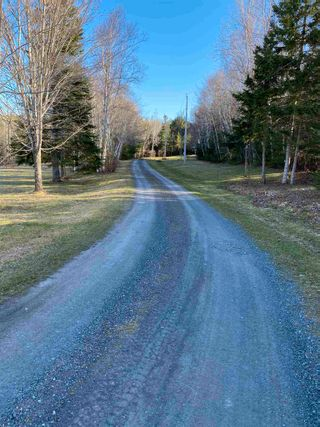Photo 5: Saunders Road in Durham: 108-Rural Pictou County Vacant Land for sale (Northern Region)  : MLS®# 202108674