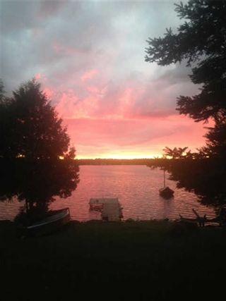 Photo 19: 101 Mckelvy Road in Kawartha Lakes: Rural Eldon House (Bungalow) for sale : MLS®# X3662796