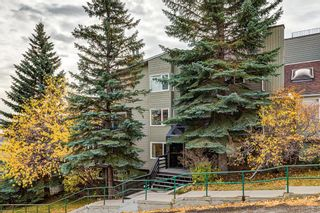 Photo 1: 204 333 2 Avenue NE in Calgary: Crescent Heights Apartment for sale : MLS®# A1039174