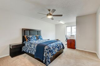 Photo 35: 265 Coral Shores Cape NE in Calgary: Coral Springs Detached for sale : MLS®# A1145653