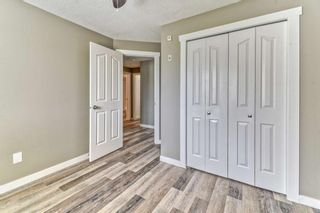 Photo 14: 337 1717 60 Street SE in Calgary: Red Carpet Apartment for sale : MLS®# A1067174
