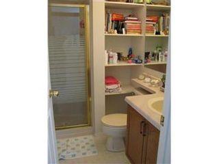 Photo 7: 403 Kenderdine Road in Saskatoon: Erindale Single Family Dwelling for sale (Saskatoon Area 01)  : MLS®# 385639