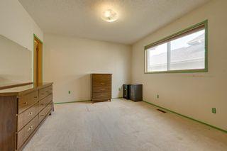 Photo 21: 12 DEACON Place: Sherwood Park House for sale : MLS®# E4253251