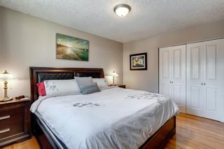Photo 14: 10408 Fairmount Drive SE in Calgary: Willow Park Detached for sale : MLS®# A1066114
