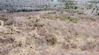 Photo 17: 8532 Trunk 4 Highway in Telford: 108-Rural Pictou County Vacant Land for sale (Northern Region)  : MLS®# 202108300