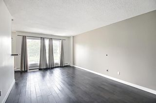 Photo 15: 303 4455A Greenview Drive NE in Calgary: Greenview Apartment for sale : MLS®# A1108022