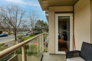 Photo 20: 201 1715 Richmond Ave in : Vi Jubilee Condo for sale (Victoria)  : MLS®# 876798
