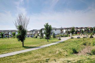 Photo 44: 113 Saddlelake Green NE in Calgary: Saddle Ridge Detached for sale : MLS®# A1127536